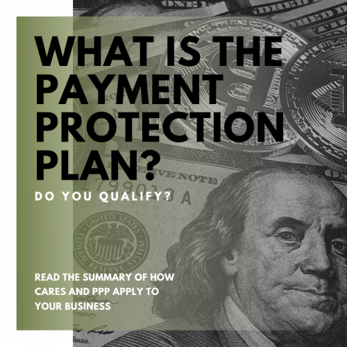 Bison Discusses the Paycheck Protection Program - PPP